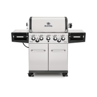 grill_straight_958543-regal-590-pro8-1